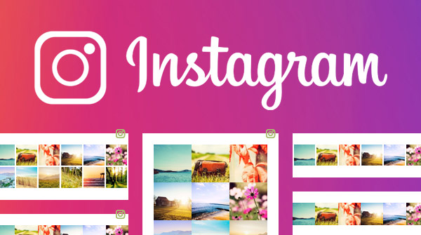 Add your Instagram feed to your website with Nimbo website builder